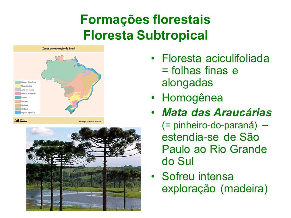 Formações florestais Floresta Subtropical Floresta aciculifoliada = folhas finas e alongadas Homogênea Mata das Araucárias (= pinheiro-do-paraná) – es