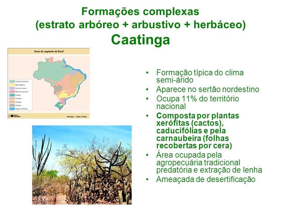 Formações complexas (estrato arbóreo + arbustivo + herbáceo) Caatinga Formação típica do clima semi-árido Aparece no sertão nordestino Ocupa 11% do te