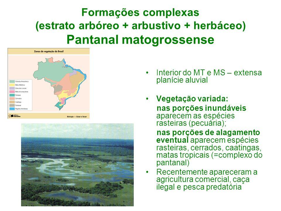 Formações complexas (estrato arbóreo + arbustivo + herbáceo) Pantanal matogrossense Interior do MT e MS – extensa planície aluvial Vegetação variada: