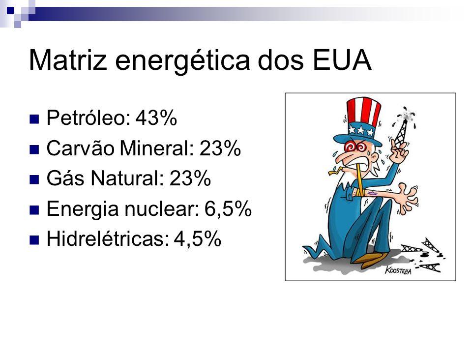 Matriz energética dos EUA Petróleo: 43% Carvão Mineral: 23% Gás Natural: 23% Energia nuclear: 6,5% Hidrelétricas: 4,5%