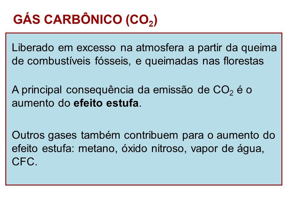 GÁS CARBÔNICO (CO 2 ) Liberado em excesso na atmosfera a partir da queima de combustíveis fósseis, e queimadas nas florestas A principal consequência
