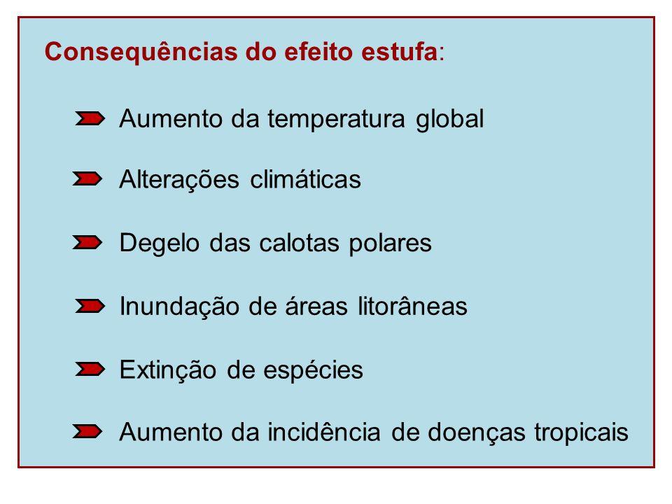 Consequências do efeito estufa: Aumento da incidência de doenças tropicais Extinção de espécies Inundação de áreas litorâneas Degelo das calotas polar