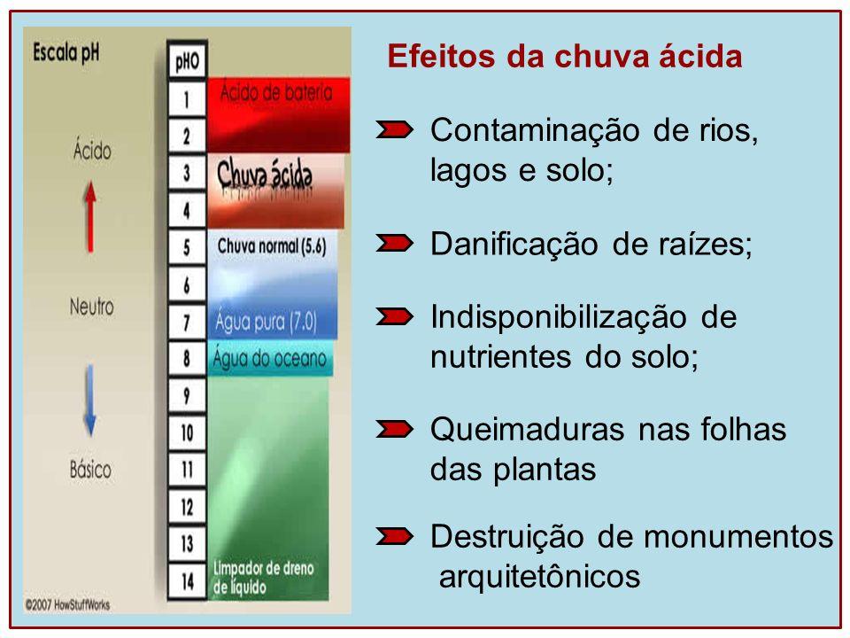 Efeitos da chuva ácida Destruição de monumentos arquitetônicos Queimaduras nas folhas das plantas Indisponibilização de nutrientes do solo; Danificaçã