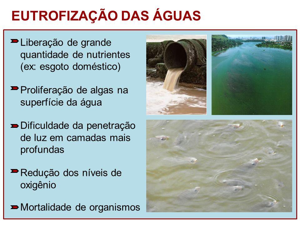 Liberação de grande quantidade de nutrientes (ex: esgoto doméstico) Proliferação de algas na superfície da água Dificuldade da penetração de luz em ca