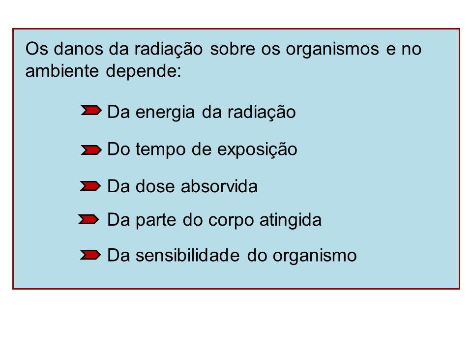 Os danos da radiação sobre os organismos e no ambiente depende: Da energia da radiação Da sensibilidade do organismo Da parte do corpo atingida Da dos