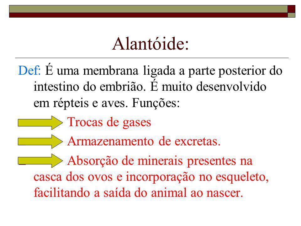 Alantóide: Def: É uma membrana ligada a parte posterior do intestino do embrião. É muito desenvolvido em répteis e aves. Funções: · Trocas de gases ·