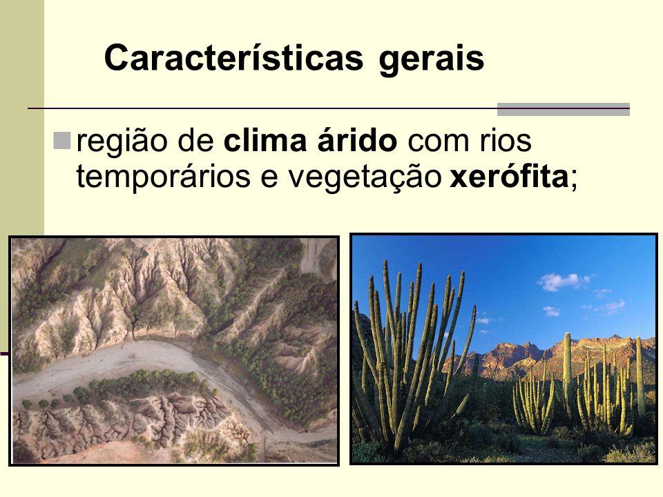 região de clima árido com rios temporários e vegetação xerófita; Características gerais