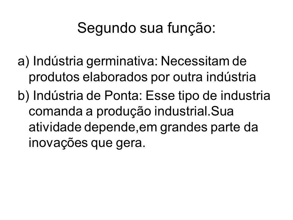 Segundo sua função: a) Indústria germinativa: Necessitam de produtos elaborados por outra indústria b) Indústria de Ponta: Esse tipo de industria coma