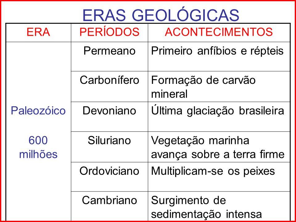 ERAS GEOLÓGICAS ERAPERÍODOSACONTECIMENTOS PermeanoPrimeiro anfíbios e répteis CarboníferoFormação de carvão mineral PaleozóicoDevonianoÚltima glaciaçã