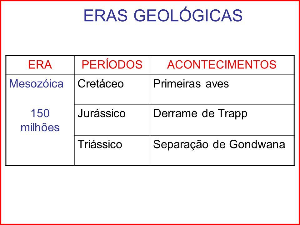 ERAS GEOLÓGICAS ERAPERÍODOSACONTECIMENTOS MesozóicaCretáceoPrimeiras aves 150 milhões JurássicoDerrame de Trapp TriássicoSeparação de Gondwana