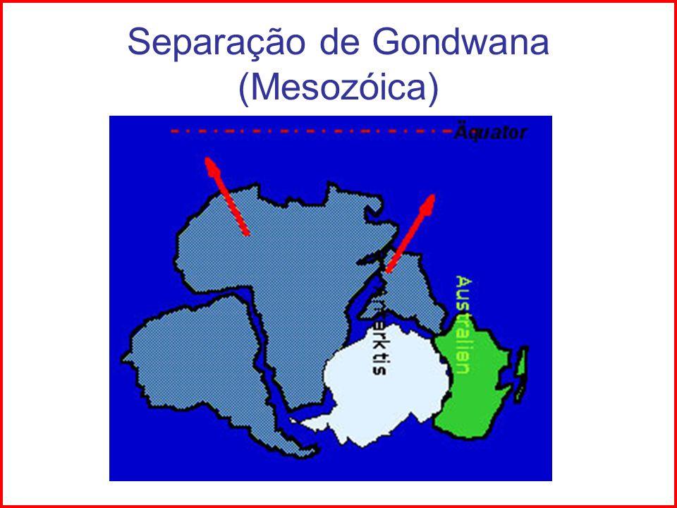 Separação de Gondwana (Mesozóica)