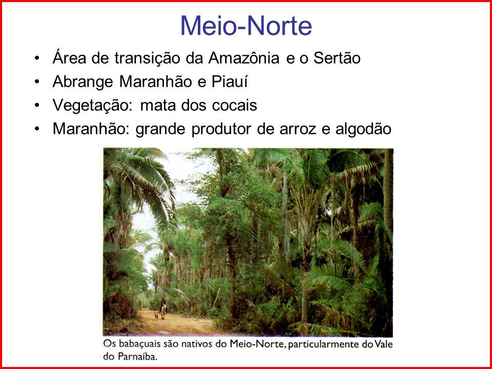 Meio-Norte Área de transição da Amazônia e o Sertão Abrange Maranhão e Piauí Vegetação: mata dos cocais Maranhão: grande produtor de arroz e algodão