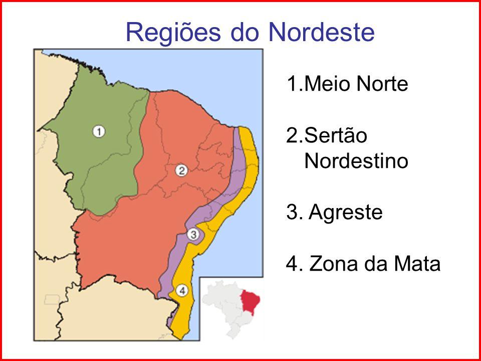 Regiões do Nordeste 1.Meio Norte 2.Sertão Nordestino 3. Agreste 4. Zona da Mata