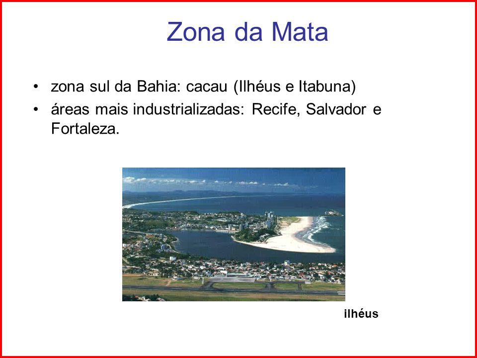 Zona da Mata zona sul da Bahia: cacau (Ilhéus e Itabuna) áreas mais industrializadas: Recife, Salvador e Fortaleza. ilhéus