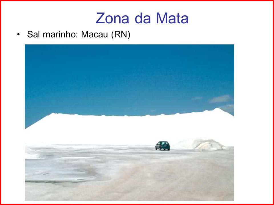 Zona da Mata Sal marinho: Macau (RN) Ilhéus