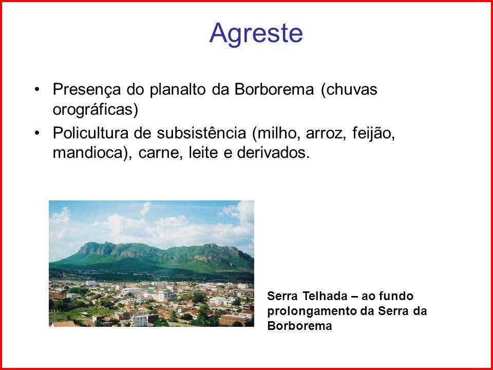 Agreste Presença do planalto da Borborema (chuvas orográficas) Policultura de subsistência (milho, arroz, feijão, mandioca), carne, leite e derivados.