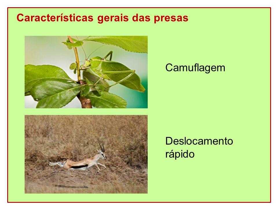 Características gerais das presas Camuflagem Deslocamento rápido