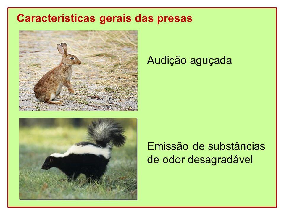 Características gerais das presas Audição aguçada Emissão de substâncias de odor desagradável