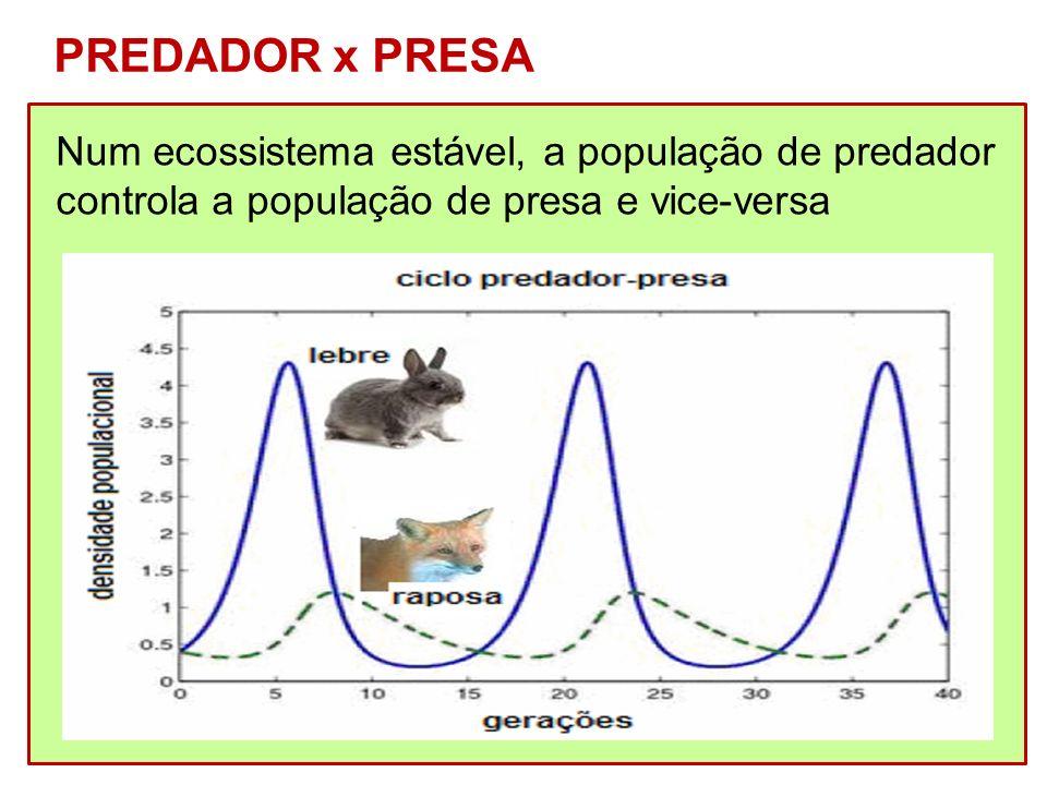 Num ecossistema estável, a população de predador controla a população de presa e vice-versa PREDADOR x PRESA