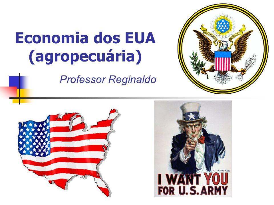 Economia dos EUA (agropecuária) Professor Reginaldo