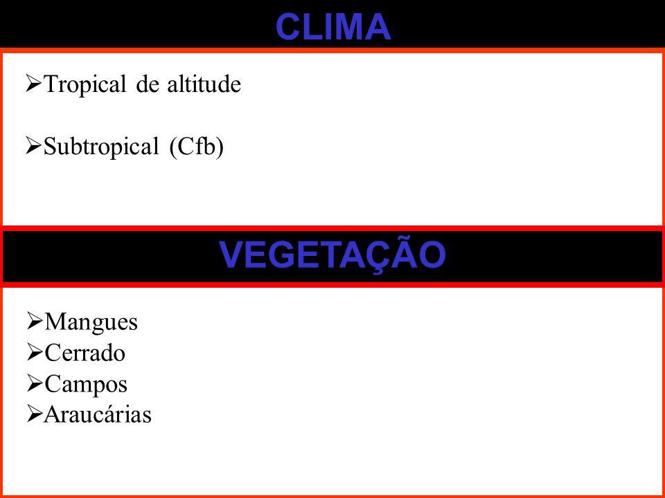 CLIMA VEGETAÇÃO Tropical de altitude Subtropical (Cfb) Mangues Cerrado Campos Araucárias