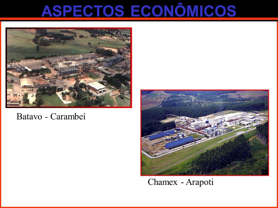 ASPECTOS ECONÔMICOS Batavo - Carambeí Chamex - Arapoti