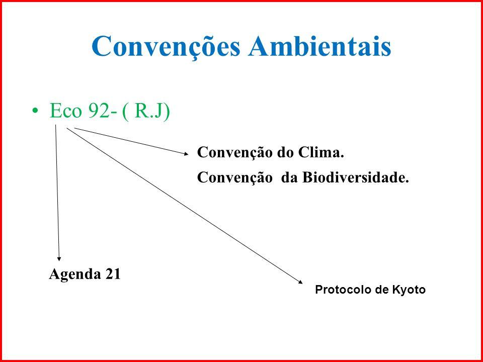 Convenções Ambientais Convenção do Clima. Convenção da Biodiversidade. Agenda 21 Protocolo de Kyoto Eco 92- ( R.J)