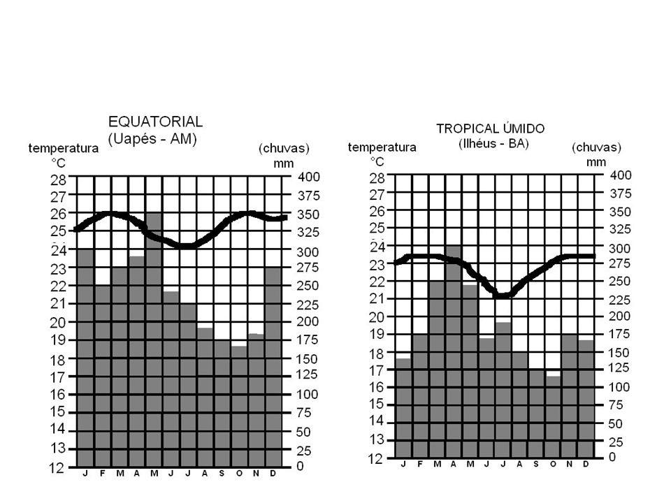 Características das águas oceânicas Temperatura Varia em função da taxa de radiação Latitude Fatores de variação da radiação Profundidade Correntes Marítimas