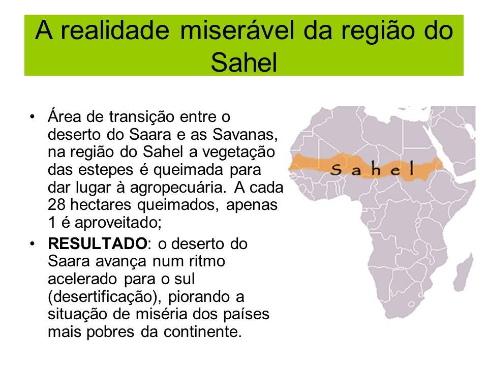 A realidade miserável da região do Sahel Área de transição entre o deserto do Saara e as Savanas, na região do Sahel a vegetação das estepes é queimad