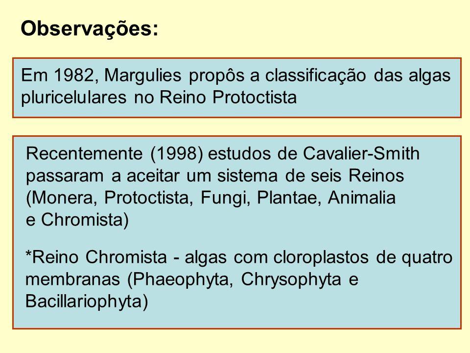 Observações: Em 1982, Margulies propôs a classificação das algas pluricelulares no Reino Protoctista Recentemente (1998) estudos de Cavalier-Smith pas