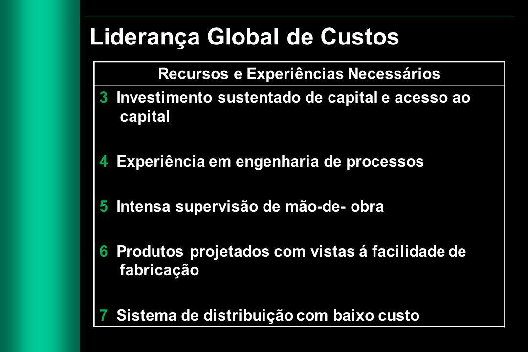 Recursos e Experiências Necessários 3 Investimento sustentado de capital e acesso ao capital 4 Experiência em engenharia de processos 5 Intensa superv