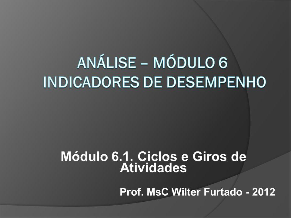 Módulo 6.1. Ciclos e Giros de Atividades Prof. MsC Wilter Furtado - 2012