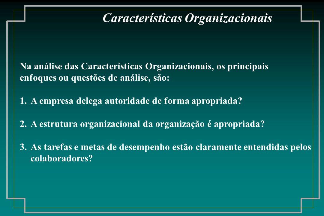 Na análise das Características Organizacionais, os principais enfoques ou questões de análise, são: 1.A empresa delega autoridade de forma apropriada?