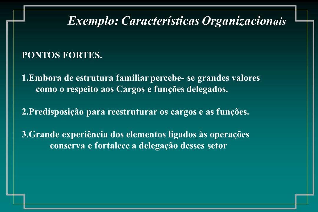 PONTOS FORTES. 1.Embora de estrutura familiar percebe- se grandes valores como o respeito aos Cargos e funções delegados. 2.Predisposição para reestru