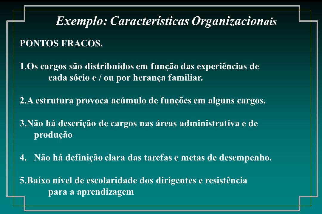 PONTOS FRACOS. 1.Os cargos são distribuídos em função das experiências de cada sócio e / ou por herança familiar. 2.A estrutura provoca acúmulo de fun