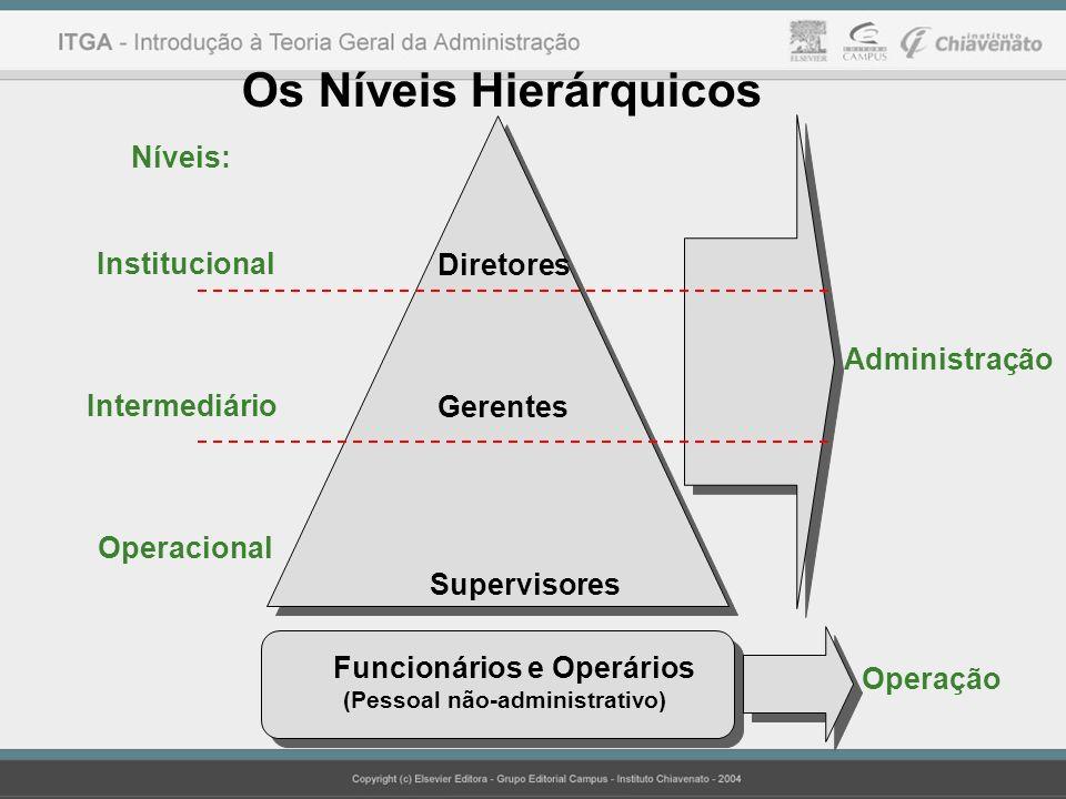 Os Níveis Hierárquicos Níveis: Institucional Intermediário Operacional Diretores Gerentes Supervisores Administração Operação Funcionários e Operários (Pessoal não-administrativo) Funcionários e Operários (Pessoal não-administrativo)