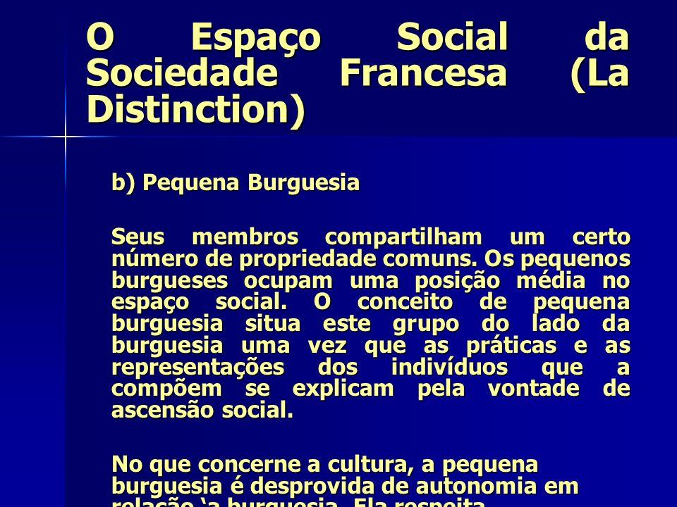 O Espaço Social da Sociedade Francesa (La Distinction) b) Pequena Burguesia Seus membros compartilham um certo número de propriedade comuns. Os pequen
