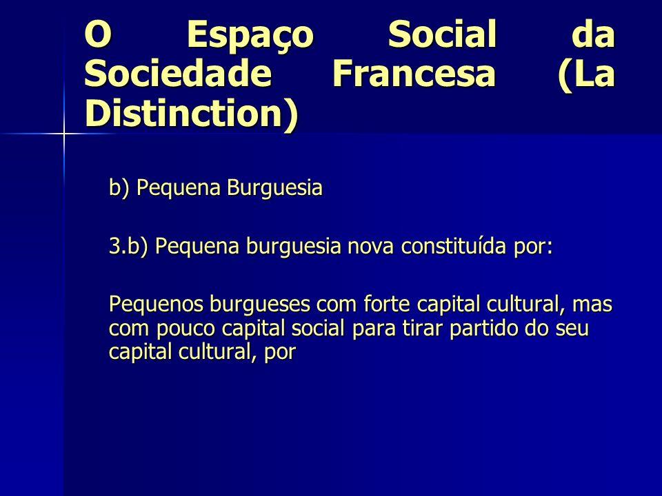 O Espaço Social da Sociedade Francesa (La Distinction) b) Pequena Burguesia 3.b) Pequena burguesia nova constituída por: Pequenos burgueses com forte