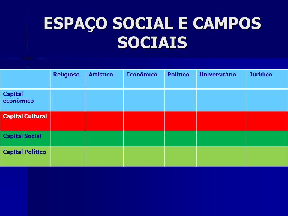 O QUE SÃO OS CAMPOS SOCIAIS.DIVISÃO DO TRABALHO SOCIAL.