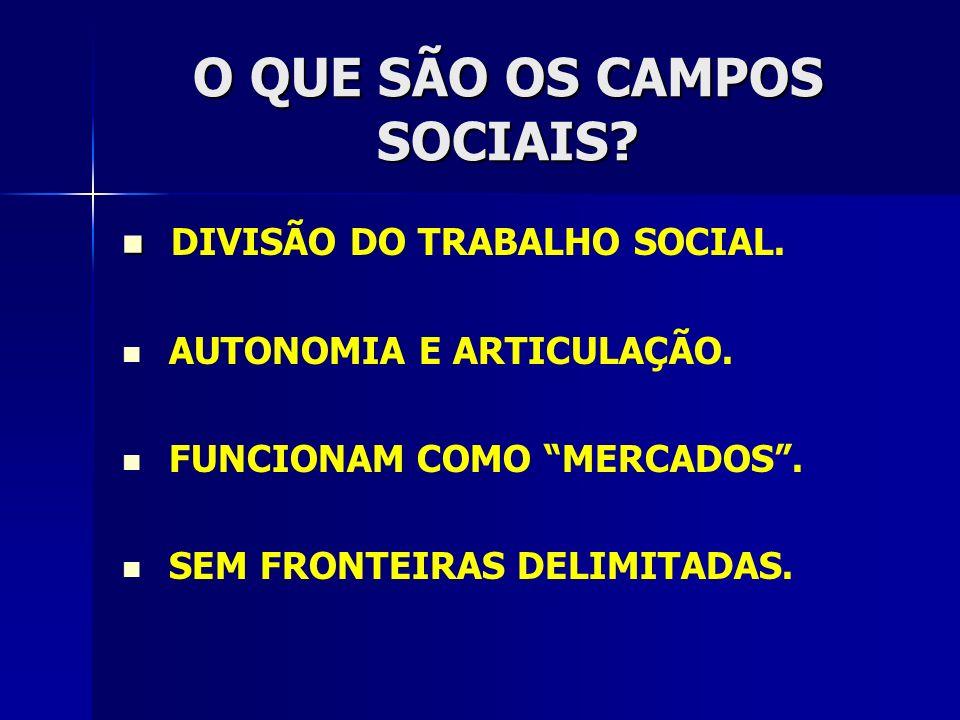O QUE SÃO OS CAMPOS SOCIAIS? DIVISÃO DO TRABALHO SOCIAL. AUTONOMIA E ARTICULAÇÃO. FUNCIONAM COMO MERCADOS. SEM FRONTEIRAS DELIMITADAS.