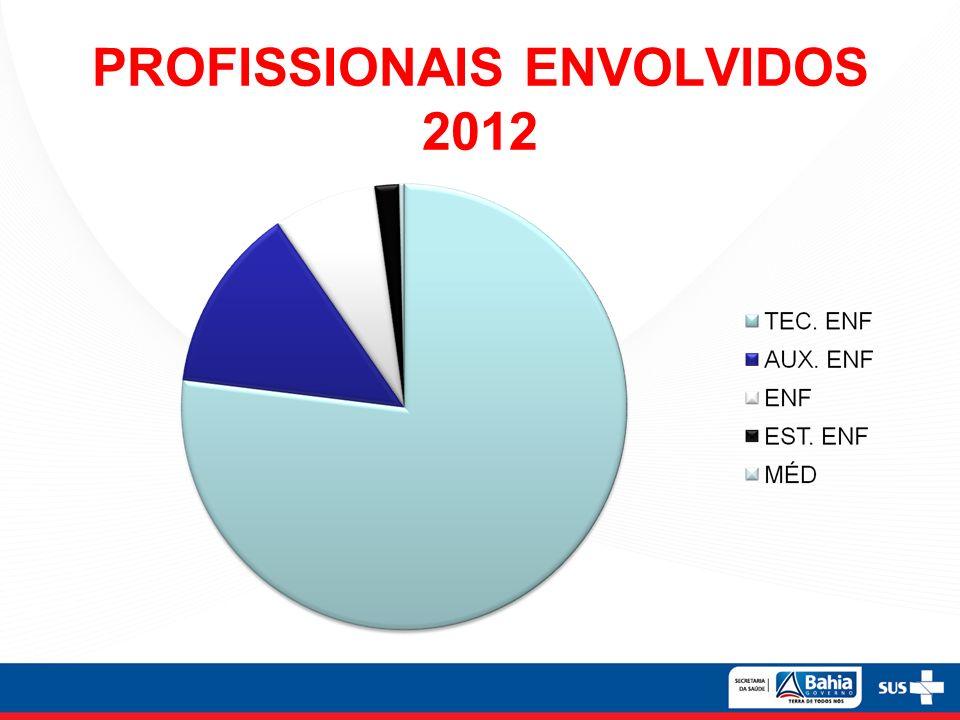 PROFISSIONAIS ENVOLVIDOS 2012
