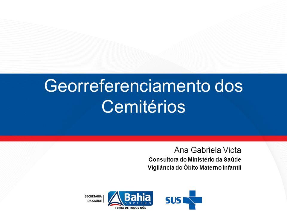 Georreferenciamento dos Cemitérios Ana Gabriela Victa Consultora do Ministério da Saúde Vigilância do Óbito Materno Infantil