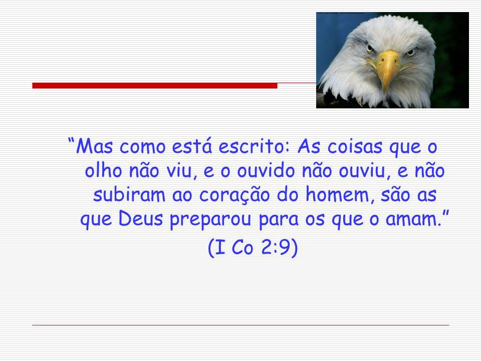 Mas como está escrito: As coisas que o olho não viu, e o ouvido não ouviu, e não subiram ao coração do homem, são as que Deus preparou para os que o a