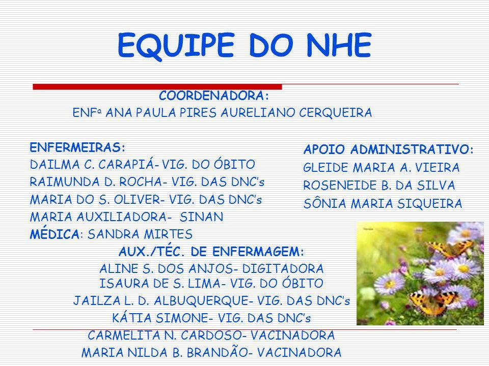 EQUIPE DO NHE COORDENADORA: ENF a ANA PAULA PIRES AURELIANO CERQUEIRA ENFERMEIRAS: DAILMA C. CARAPIÁ- VIG. DO ÓBITO RAIMUNDA D. ROCHA- VIG. DAS DNCs M
