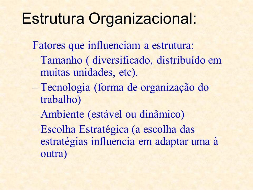 Estrutura Organizacional: –Arcabouço: posição das pessoas; formulação de regras e procedimentos e pela prescrição de autoridade; –Padrões de Interação