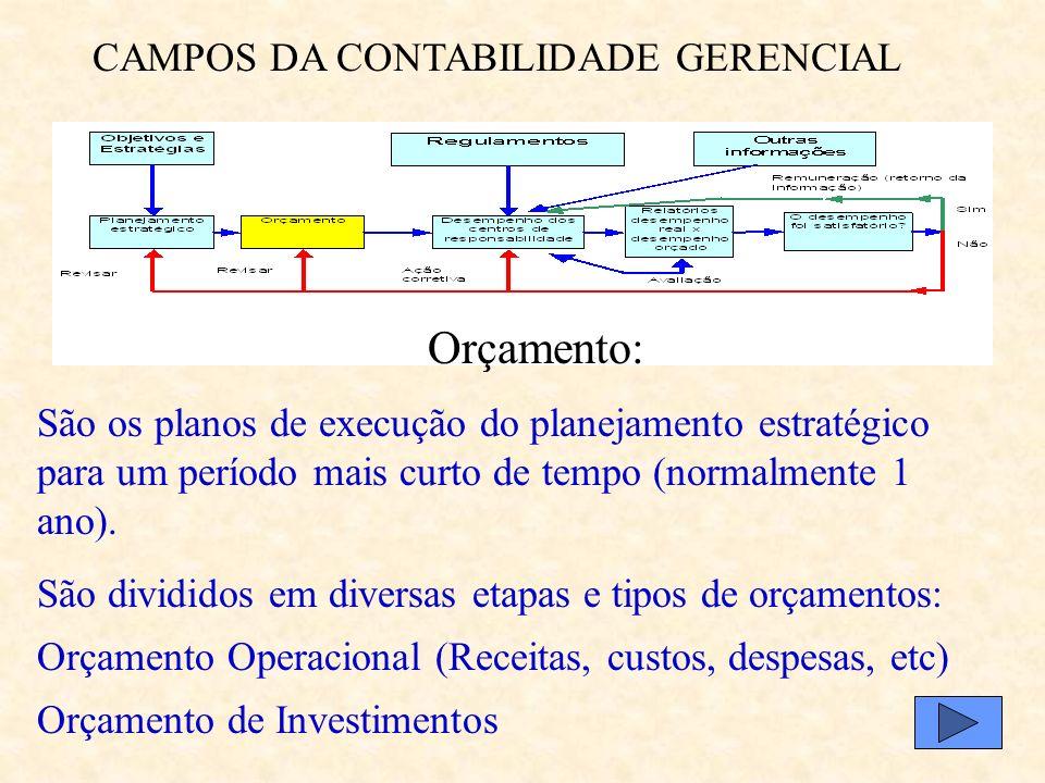 CAMPOS DA CONTABILIDADE GERENCIAL Fonte: Anthony e Govindarajan, 2002, pg. 148 Planejamento Estratégico: Conceito: Processo de transformar as opções e