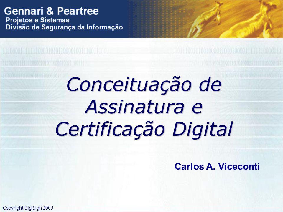 Copyright DigiSign 2003 Conceituação de Assinatura e Certificação Digital Carlos A. Viceconti