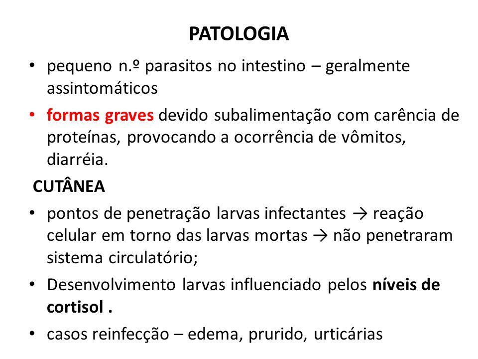 PATOLOGIA pequeno n.º parasitos no intestino – geralmente assintomáticos formas graves devido subalimentação com carência de proteínas, provocando a o