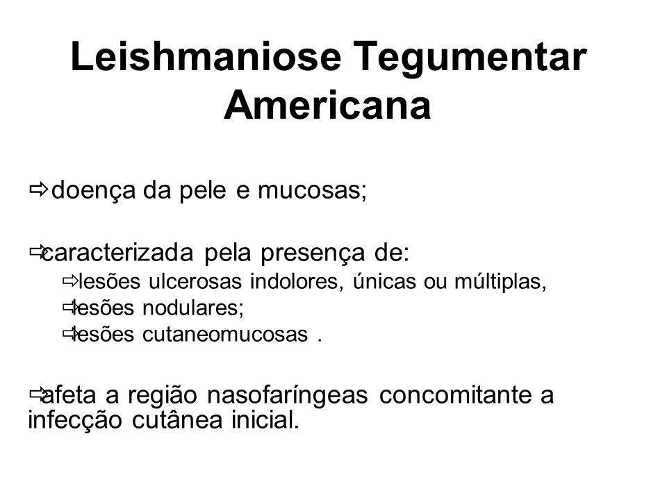 Leishmaniose Tegumentar Americana doença da pele e mucosas; caracterizada pela presença de: lesões ulcerosas indolores, únicas ou múltiplas, lesões nodulares; lesões cutaneomucosas.