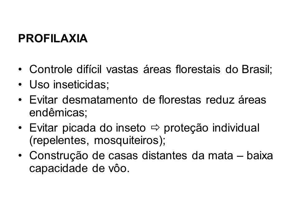 PROFILAXIA Controle difícil vastas áreas florestais do Brasil; Uso inseticidas; Evitar desmatamento de florestas reduz áreas endêmicas; Evitar picada do inseto proteção individual (repelentes, mosquiteiros); Construção de casas distantes da mata – baixa capacidade de vôo.